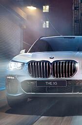 ЕКСТЕР'ЄР BMW X5.